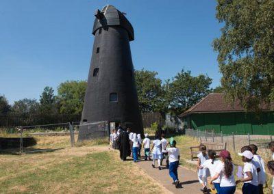 Windmill-Trip-2