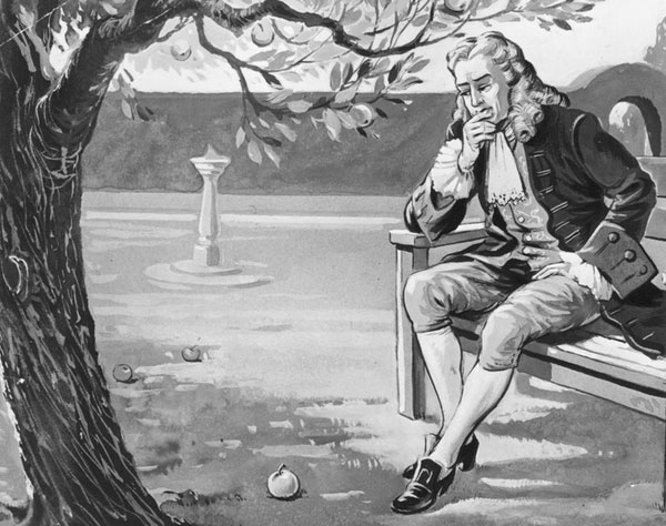 Sir Issac Newton studying the apple and gravity.