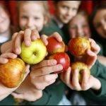 Free Fruit provided for all children