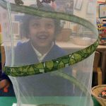 Butterflies Hatched from Chrysalis